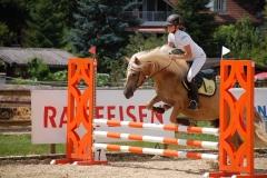 Pferdesporttage 2016